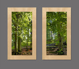 Photo Mural 6paL_2-22x40_rustic_maple
